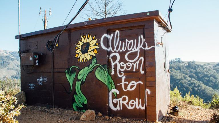 "Photo of a cabin with slogan ""Always room to grow"""
